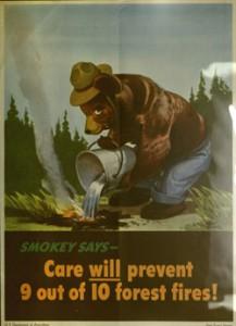 A somewhat menacing-looking Smokey reminds us to take care.