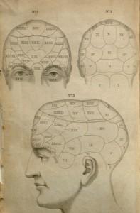 spurzheim-head