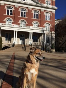 Trixie at Jesse Hall