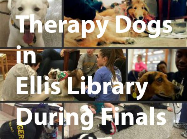 Therapy Dogs for Finals in Ellis Library