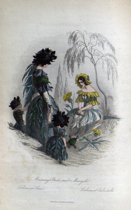 Flowers-Personified-9.jpg
