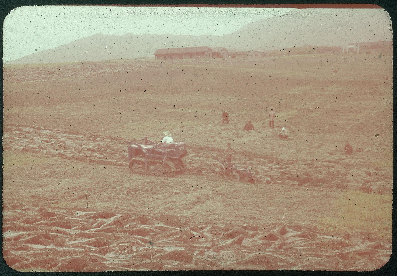 Hiller 09-079: Farmers working in a field in Nanking 1