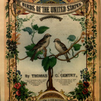 Nests and eggs of birds of the United States / by Thomas G. Gentry.