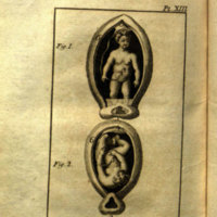 A physical view of man and woman in a state of marriage : with anatomical engravings / translated from the last French edition of M. de Lignac.