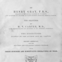 Anatomy, descriptive and surgical / by Henry Gray ; the drawings by H.V. Carter ; the dissections jointly by the author and Dr. Carter ; with three hundred and ninety-five engravings on wood.
