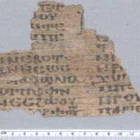 Coptic Bible : [1 leaf]