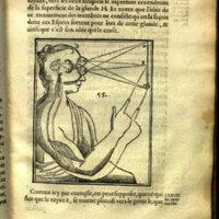 L'homme / de René Descartes : et vn Traitté de la formation du foetus / du mesme autheur ; auec les Remarques de Lovys de La Forge, docteur en medecine, demeurant à la Fleche, sur le traitté de l'homme de René Descartes, & sur les figures par luy inuentées.
