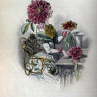 Flowers-Personified-20.jpg