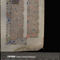 Breviary (Ms. University of Missouri. BX2000.62.A3 L43 1472). Selections<br />